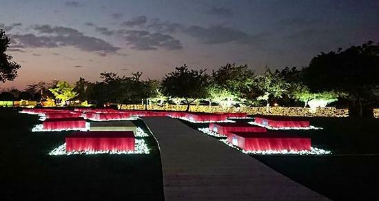 首創花海結合燈光盛宴 123公頃大公園春節燈會必賞